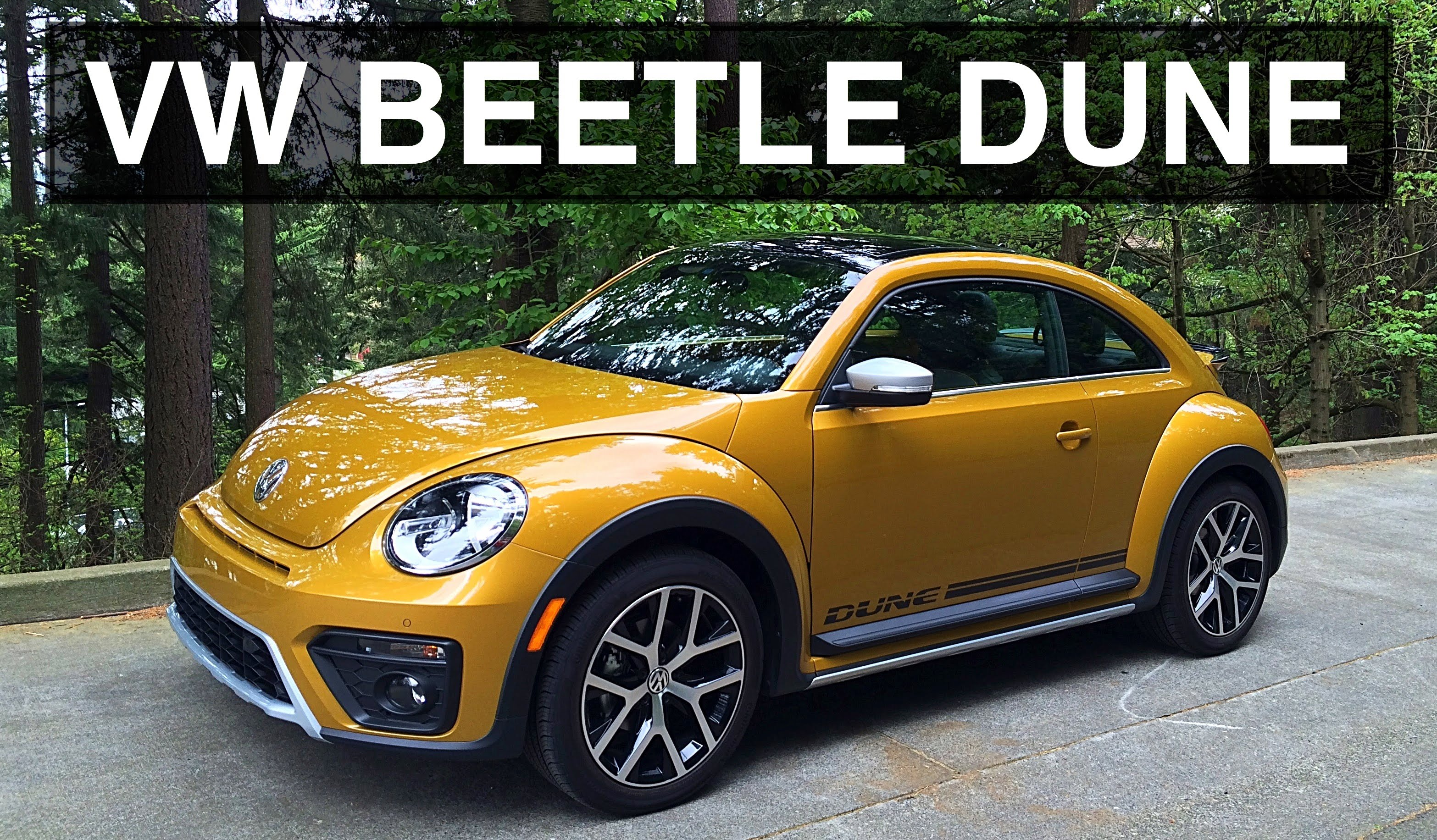 Beetle Dune Could Actually Be More Fun You Ever