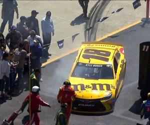 OMG Kyle Busch Crashes Into Woman In Infield Area At Food City 500 NASCAR Race!