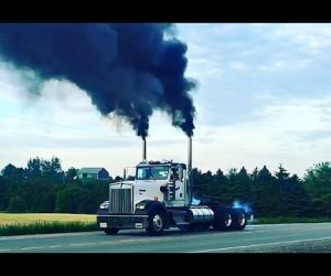 These Diesel Trucks Sing The Greatest Bad Boy Engine And Truck Sounds Ever Sung!